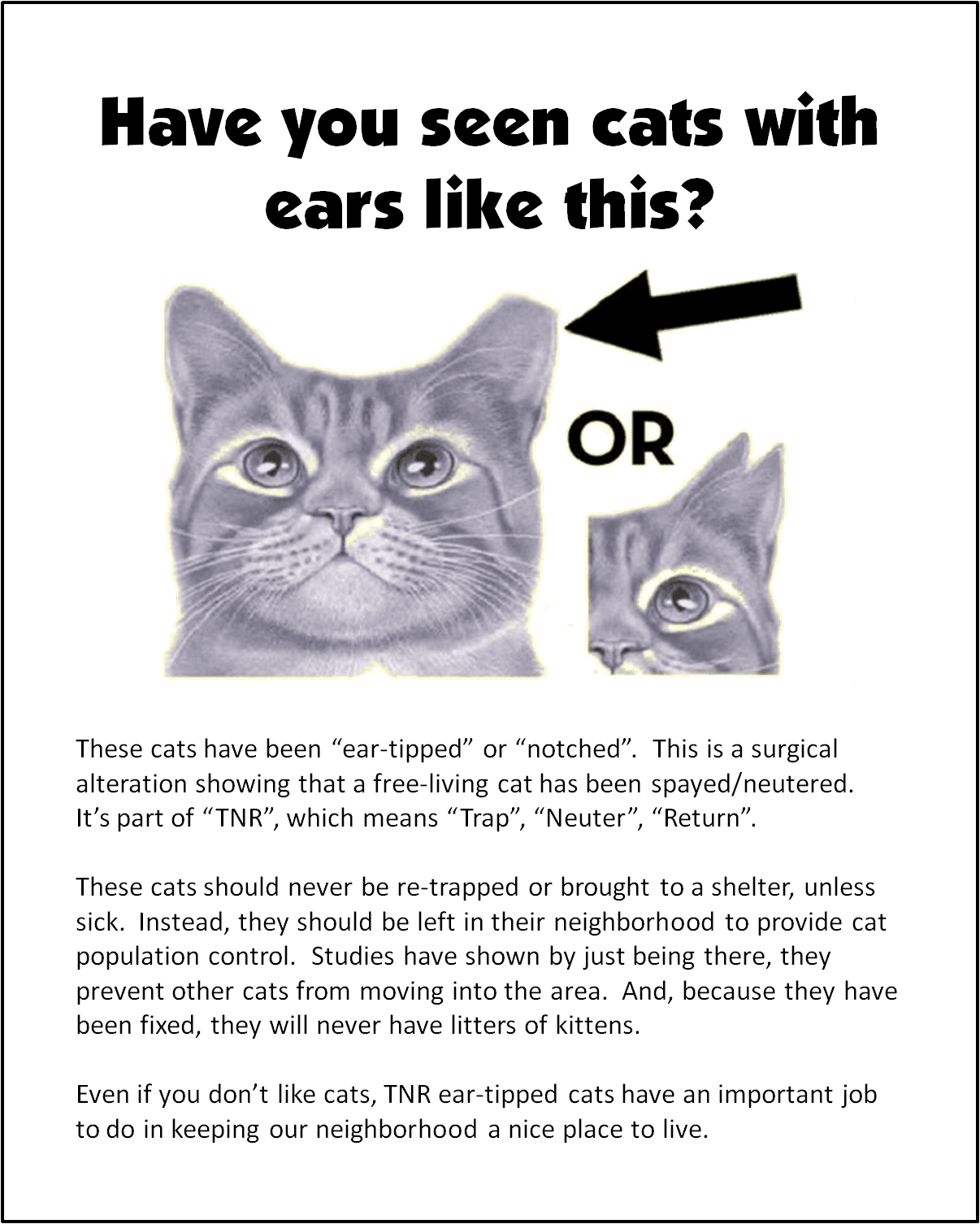 tnr_ear-tipped