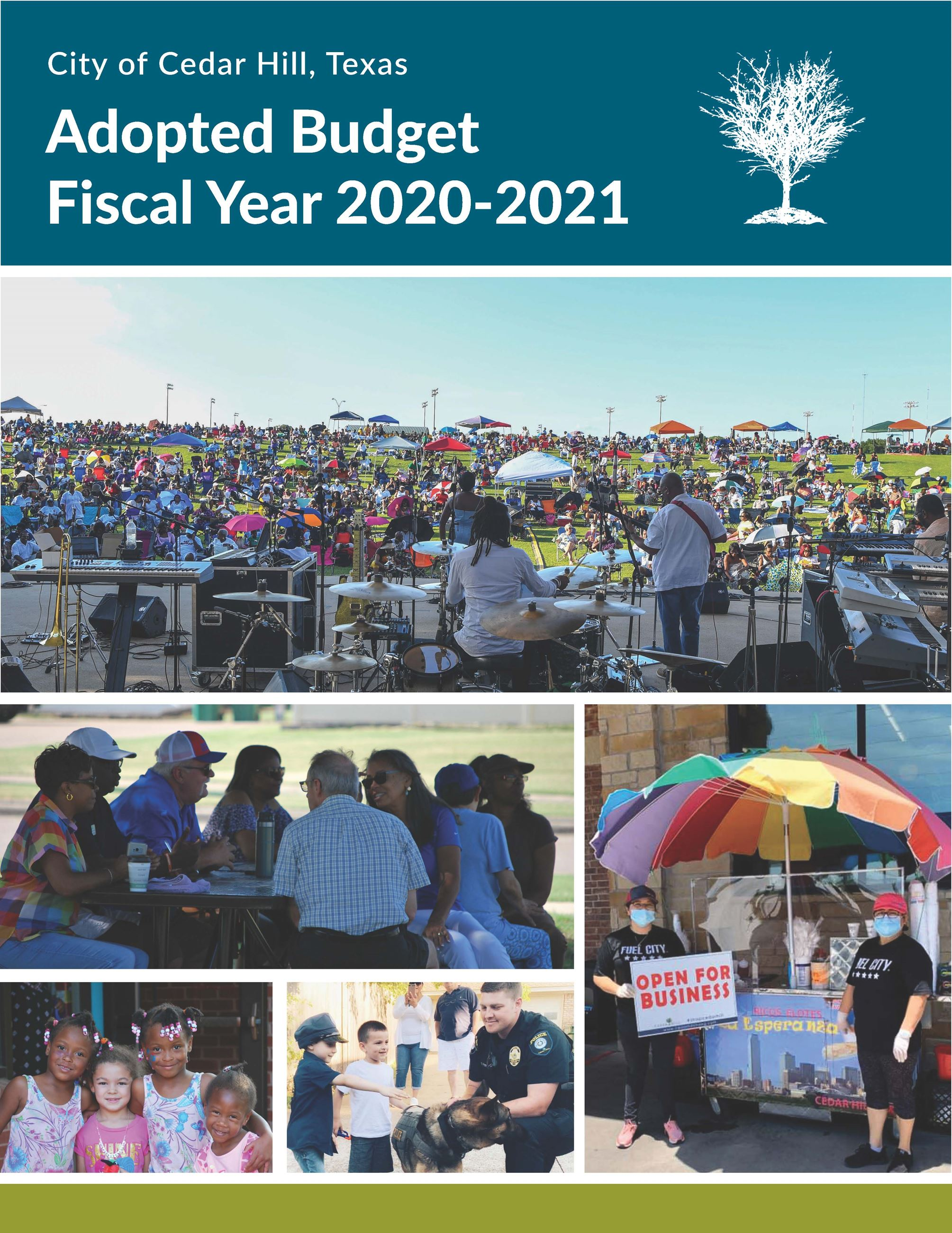 FY 21 Adopted Budget Cover Opens in new window